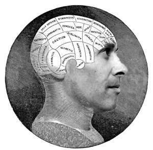 JoeActor: Phrenology Head
