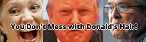 Donald's Hair banner: Joe's Dump