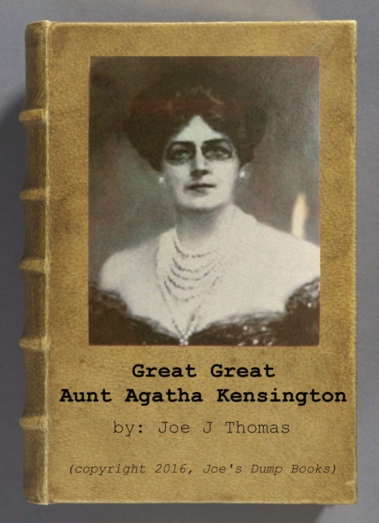 Great Great Aunt Agatha Kensington book cover