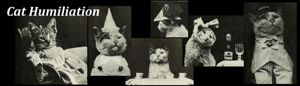 Cat Humiliation (banner)