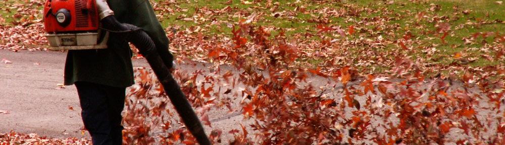 Leaf Blower Man