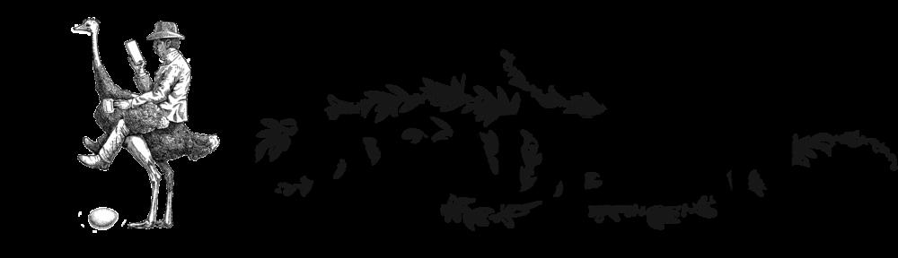 South Pasadenan News Logo